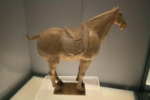 Tượng ngựa men tam sắc ( Tang sancai), triều đại nhà Đường